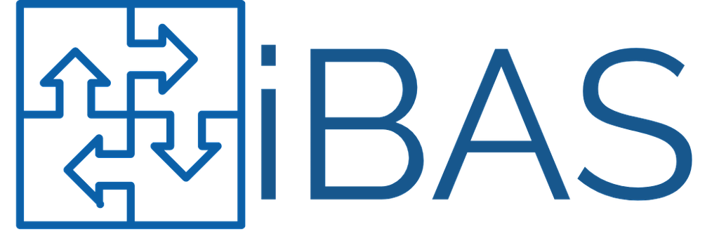 IBAS Software Development Services