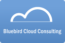 Bluebird Cloud Consulting